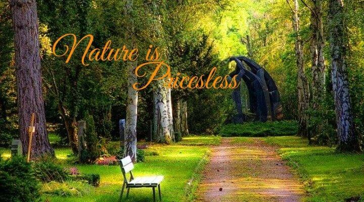 Nature is Priceless